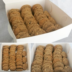 Gluten free lactation cookies - cranberry white chocolate