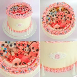 Beanie Boos themed cake with edible image