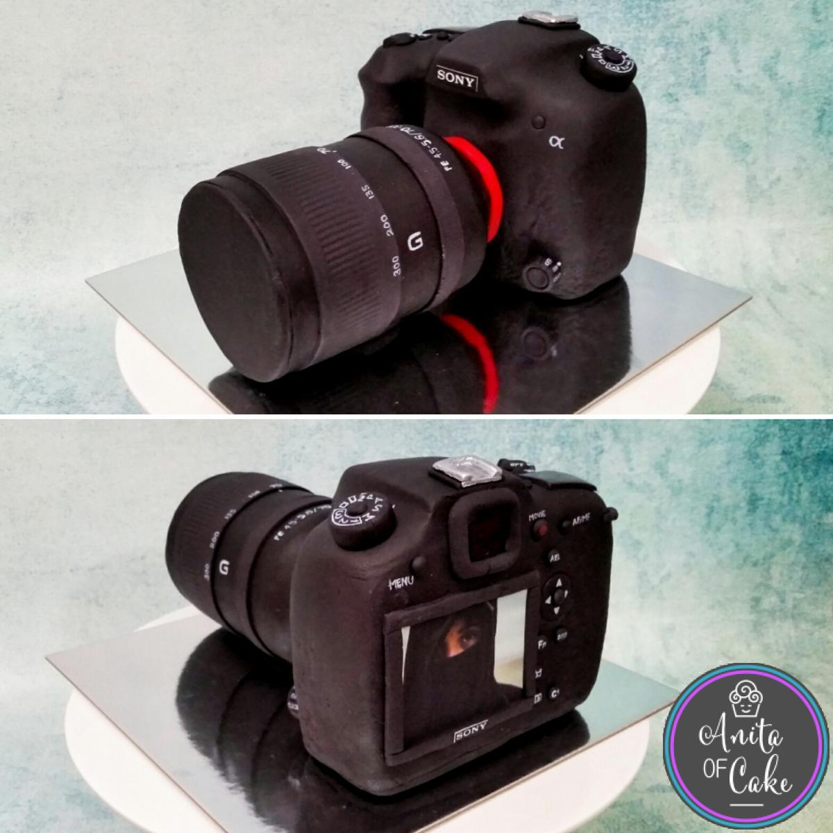 Sony DSLR camera cake topper